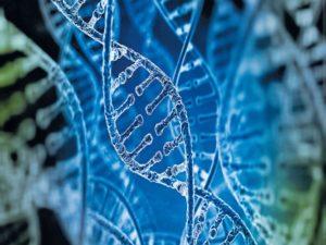 CCMB and CDFD sign MoU to improve genetic disease diagnostics_50.1