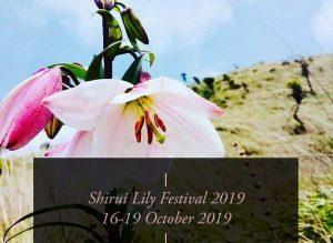 Shirui Lily Festival inaugurated in Manipur_50.1