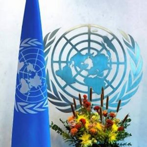 India to contribute $13.5 mn for UN development activities for 2020_50.1