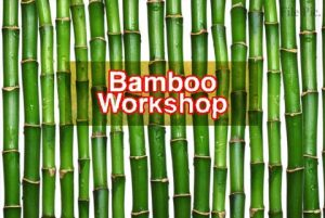Workshop on Bamboo cultivation to be held in Jammu_50.1