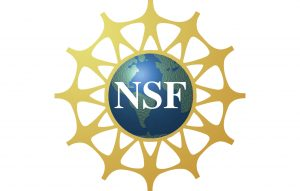 Indian-American computer scientist to lead National Science Foundation in USA_50.1
