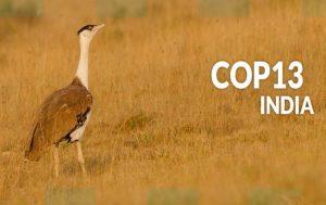 PM Modi to inaugurate UN Convention on Migratory Species_50.1