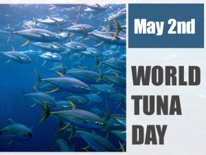 World Tuna Day observed globally on 2 May_50.1