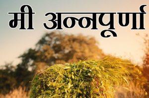 """Mee Annapurna"" initiative launched in Maharashtra_50.1"