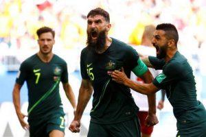 Former Socceroos captain Mile Jedinak retires from sport_50.1