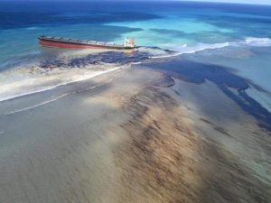 """Mauritius declares a """"state of environmental emergency""""_50.1"""