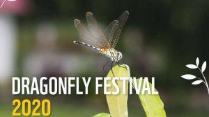 Kerala's 1st-ever Dragonfly Festival_50.1
