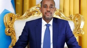 Mohamed Hussein Roble appointed as new Prime Minister of Somalia_50.1